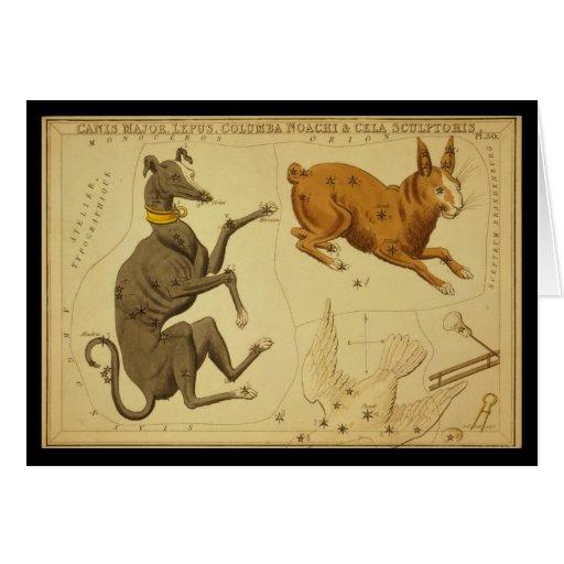 Comandante de Canis, Lepus, Columba Noachi Cela Tarjeta De Felicitación