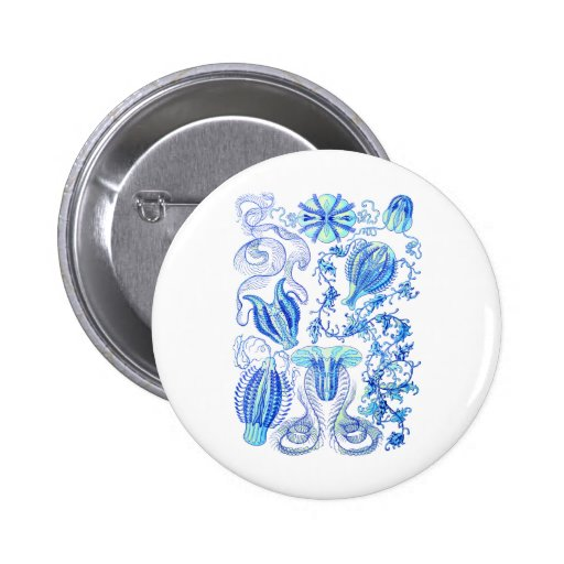 Comb jellies 2 inch round button