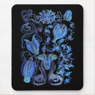 Comb jellies mouse pad