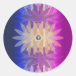 Combinación del cosmos pegatina redonda