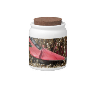 Combine harvesting corn crop in cultivated field candy jars