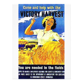 Come And Help With The Victory Harvest Flyer