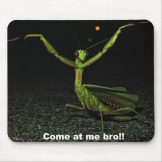 Come at me bro Mantis Mouse Pad