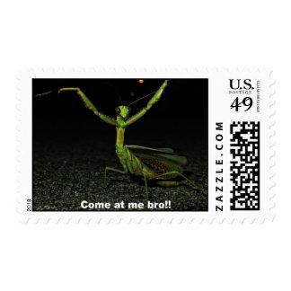 Come at me bro Mantis Postage