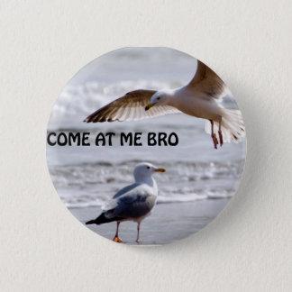 Come at me bro! Seagull Version Button
