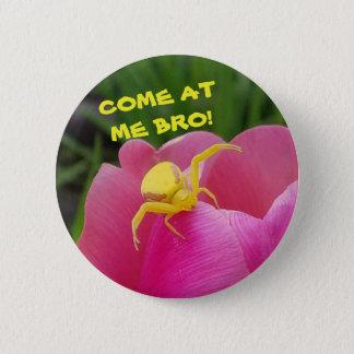 Come At  Me Bro! Yellow Crab Spider Meme Pinback Button