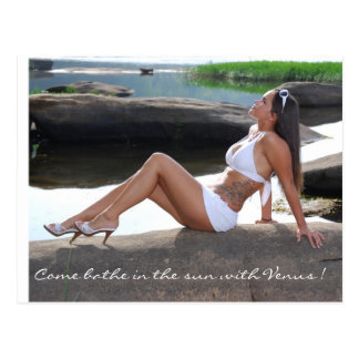 Come bathe in the sun with Venus ! Postcard