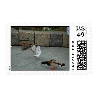 Come Closer Stamp