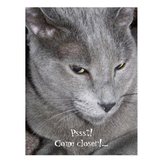 Come Closer Postcard