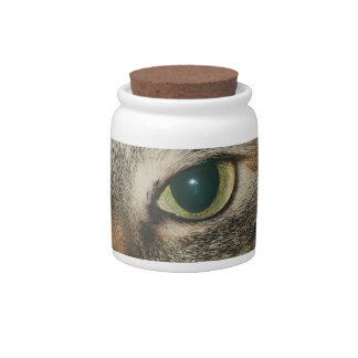 """""""Come if you dare"""" says the cat Candy Jar"""