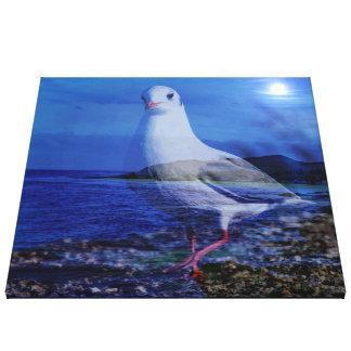 Come on, big seagull (U) Canvas Print