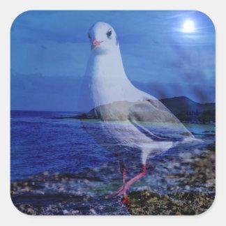Come on, big seagull (U) Square Sticker