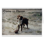 Come on Please Greeting Cards