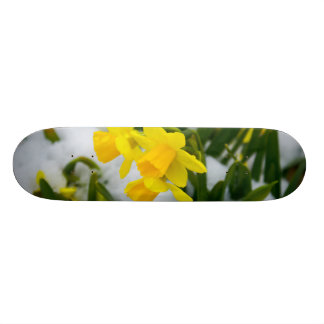 Come On Spring Time Skateboard