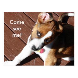 Come See Me! Postcard