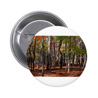 Come the Night Pinback Button