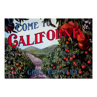 Come to California Vintage Graphic Poster