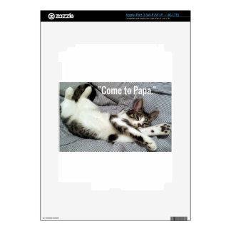 """""""Come To Papa"""" Cat iPad 3 Skin"""