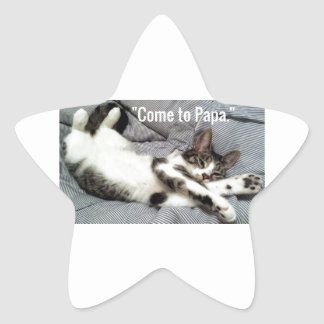 """""""Come To Papa"""" Cat Star Sticker"""