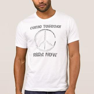 Come Together Tee Shirt
