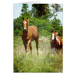 Come when Called, Two Horses Card