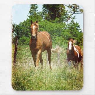 Come when Called, Two Horses Mouse Pad