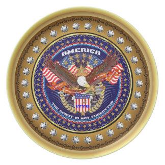 Comentarios patrióticos o del veterano de la plato para fiesta