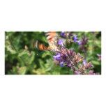 comenzar la mariposa tarjetas publicitarias a todo color