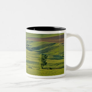 Comertown gravel road in remote northeastern Two-Tone coffee mug