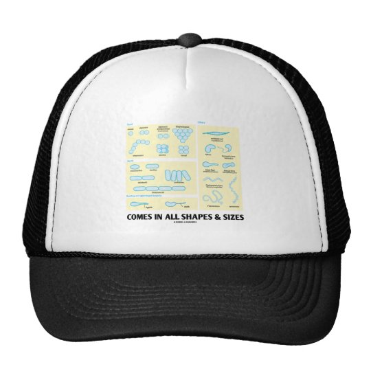 Comes In All Shapes & Sizes (Bacterial Morphology) Trucker Hat