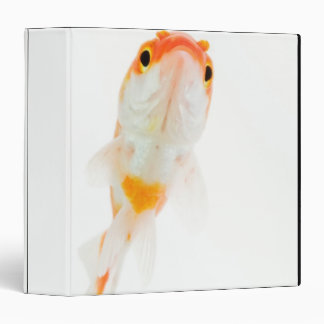 Comet / Comet-tailed goldfish Binder