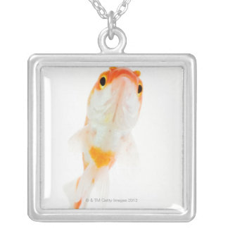 Comet / Comet-tailed goldfish Silver Plated Necklace