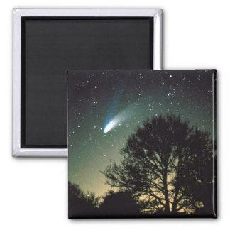 Comet Hale-Bopp and Tree Magnet
