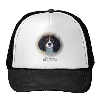 Comet Love Trucker Hat