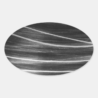 Comet Oval Sticker