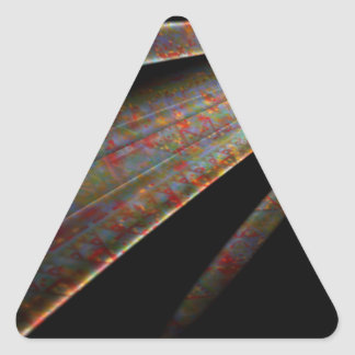 Comet Triangle Sticker