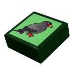 Cometa de caracol caja de regalo