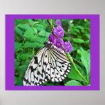 Cometa de papel en la flor púrpura impresiones