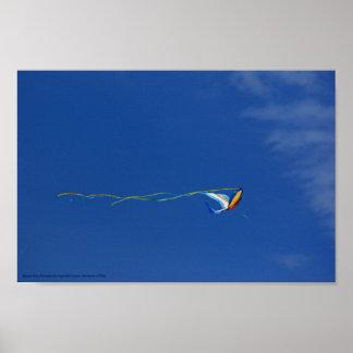 Cometa del Macaw Posters