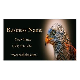 Cometa roja tarjeta de negocio