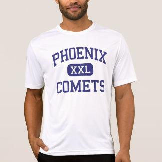 Cometas Delavan medio Wisconsin de Phoenix Camisetas