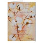 Comfort&Joy Cards