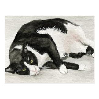 """Comfortable Tuxedo Cat"" Art Postcards"