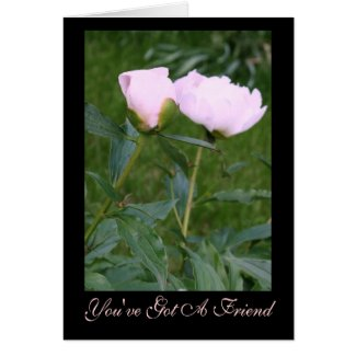 """Comforting Peonies """"You've Got A Friend"""" Card"""