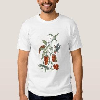 Comfrey, from 'A Curious Herbal', 1782 (colour eng T Shirt