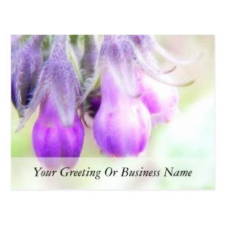 Comfrey Herb - Flowers Postcard