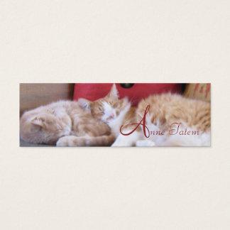 Comfy cats profile card
