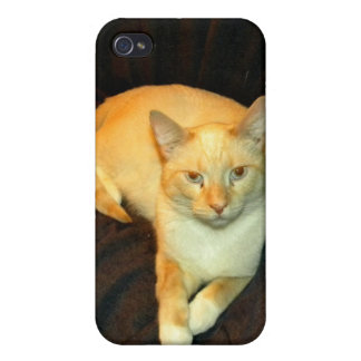 Comfy Kitty iPhone 4/4S Case