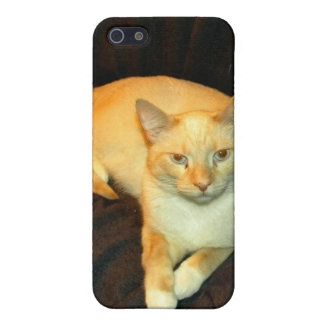 Comfy Kitty iPhone SE/5/5s Cover