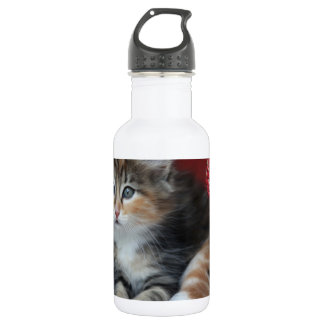 COMFY KITTY WATER BOTTLE